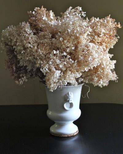 Dried Hydrangea Arrangements: Hydrangea Happy