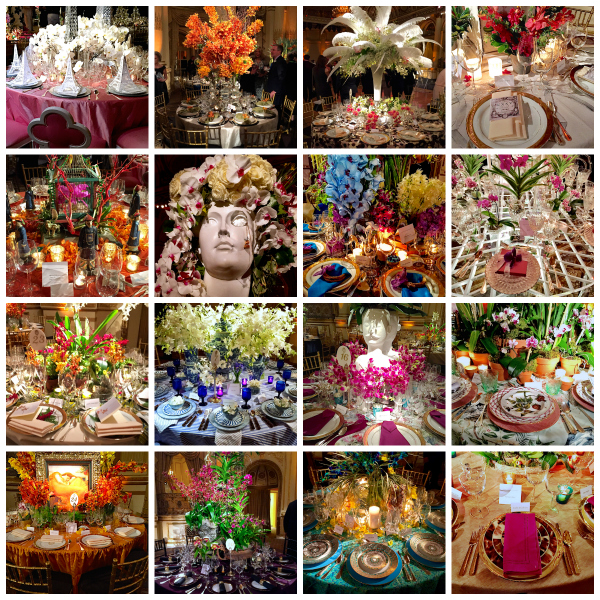 the NYBG Orchid Dinner Collage
