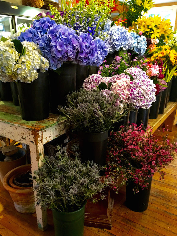 Flowers on Chestnut flowers Nantucket
