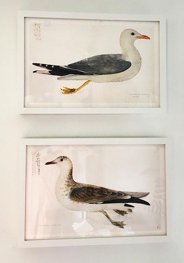prints at Coast Home Nantucket-1
