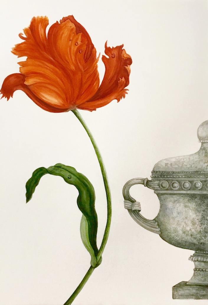 carolyne-roehm-watercolors-parrot-tulip