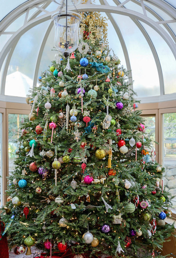 Carey Karlan Christmas tree in her conservatory