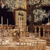 David Monn winter white wedding at the Pierre-1