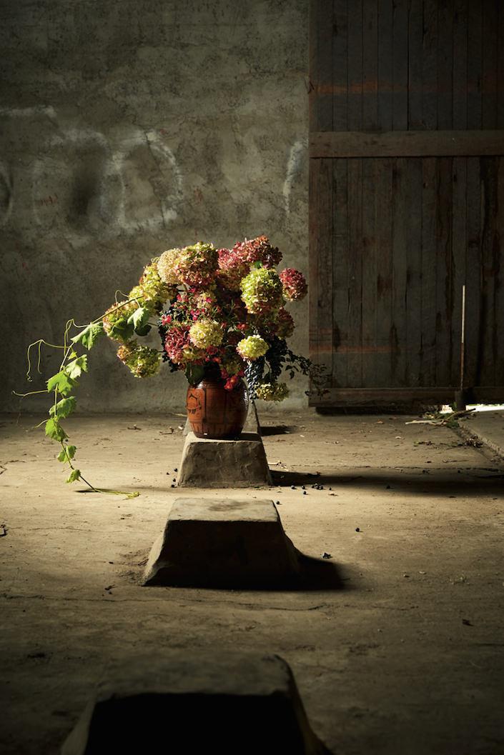 Foraged Flora hydrangea-1