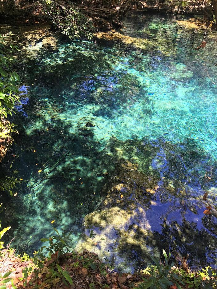 Puntacana Ecological Reserve