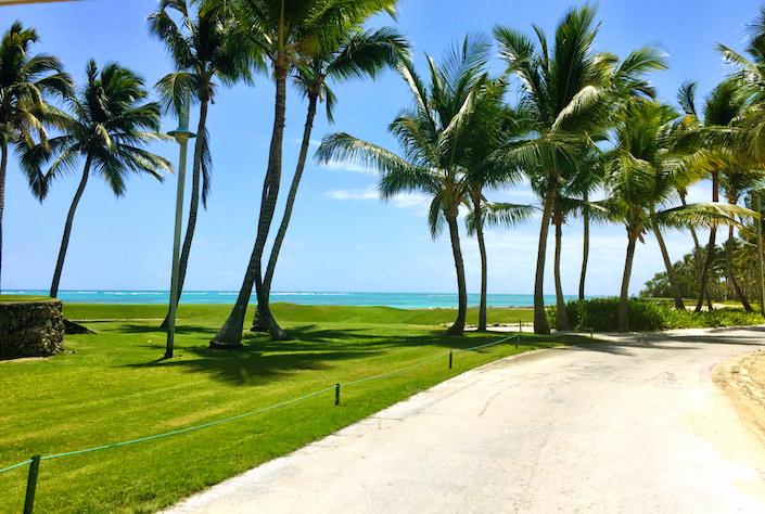 Tortuga Bay road