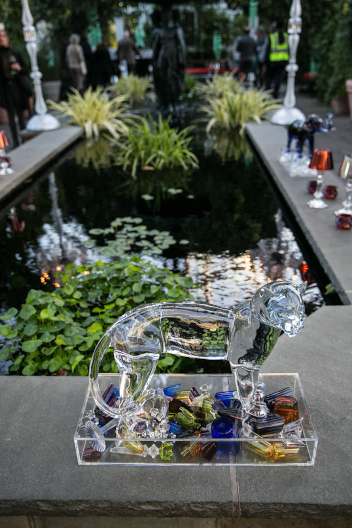 Baccarat at the NYBG 2017 Orchid Show