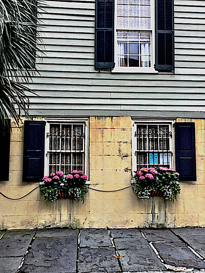 historic Charleston window boxes