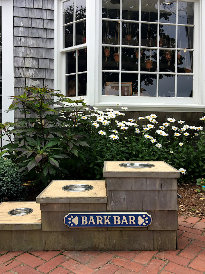 Handlebar Café Nantucket bark bar