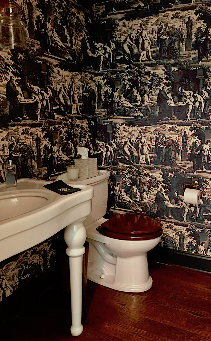 Christopher Moore Cholet toile in Quintessence powder room