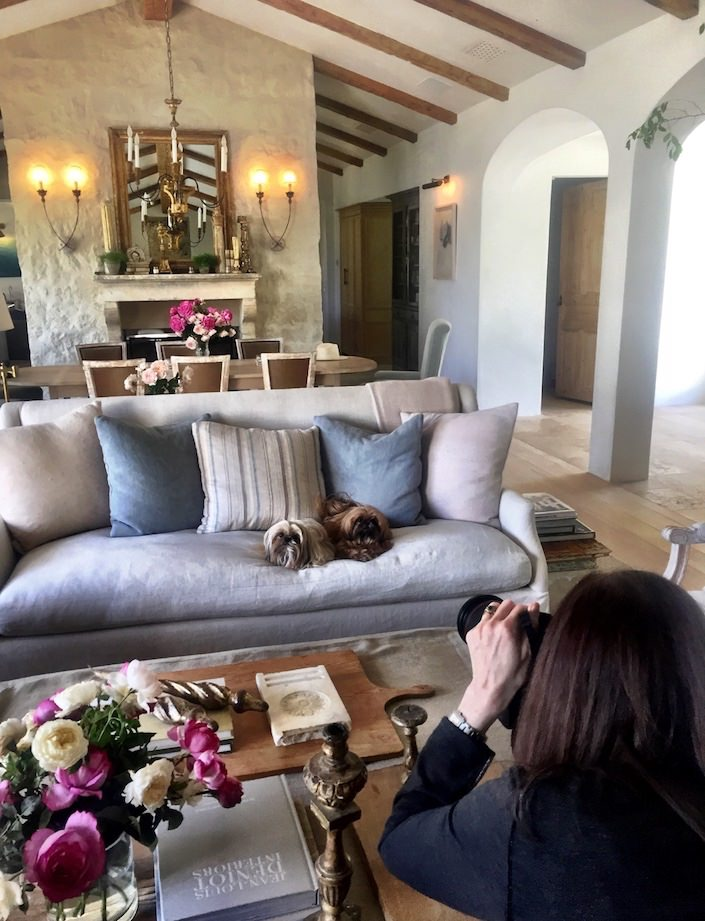 Stacey Bewkes shootint At Home with Dogs and Their Designers at Patina Farm