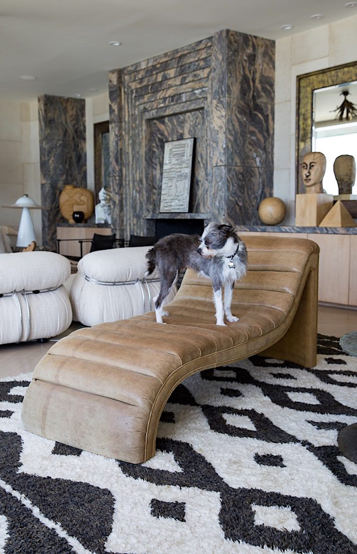 Willie Wearstler in At Home with Dogs and Their Designers 1