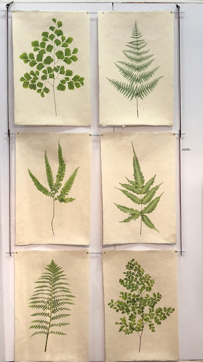 Barloga Studios Fern Prints at NY Now 2018