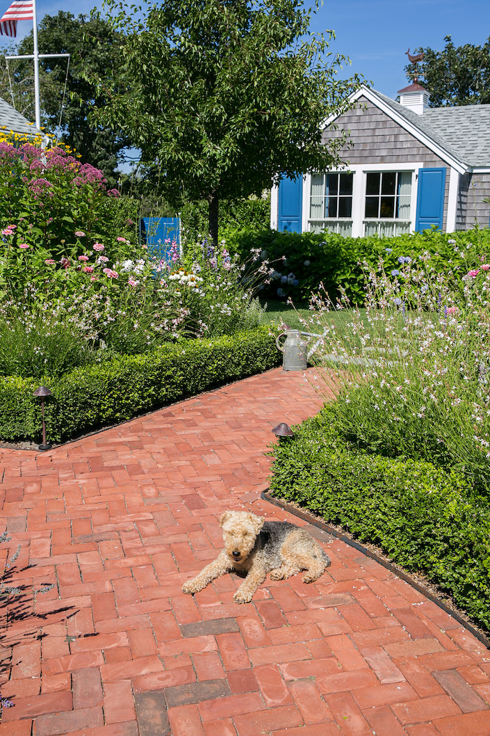 Gary McBournie on Nantucket - his dog Winston
