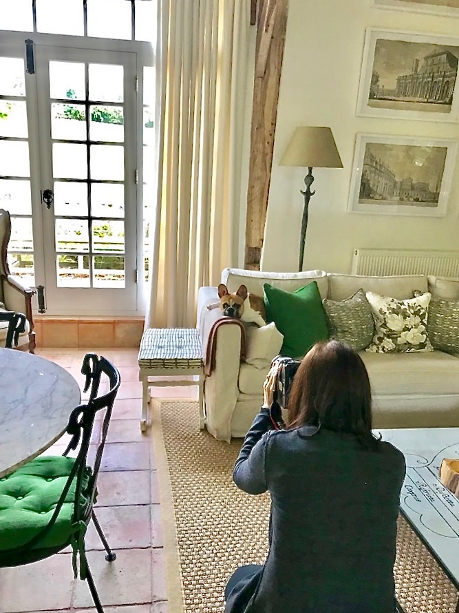 Stacey Bewkes of Quintessence shooting Paolo Moschino dog