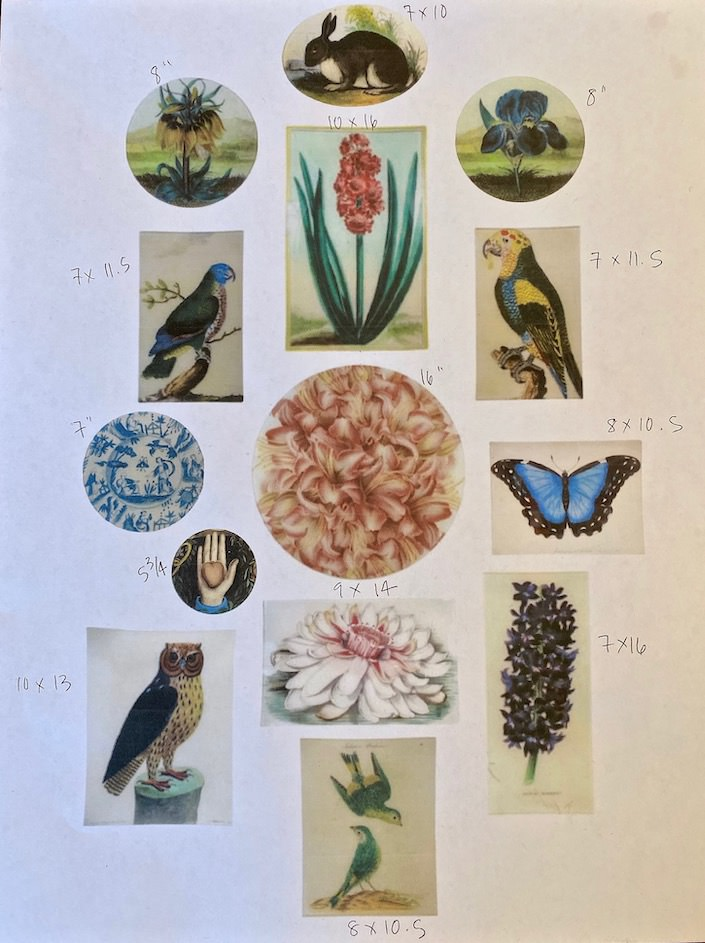 John Derian Picture Book Project layout with sizes via Quintessence