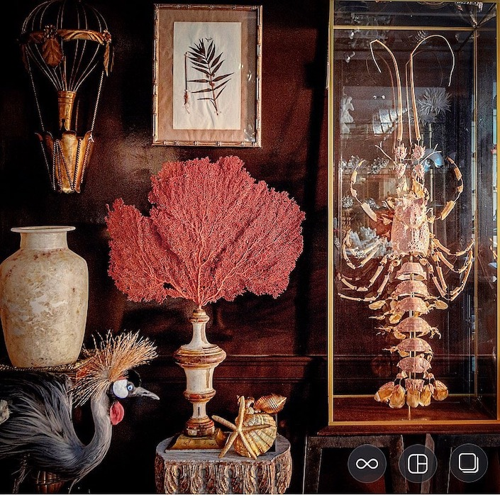Coral and decorative objects at Creel and Gow