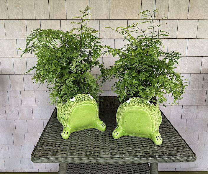 Jean Roger planters at Kate Rheinstein Brodsky's Hamptons home-1