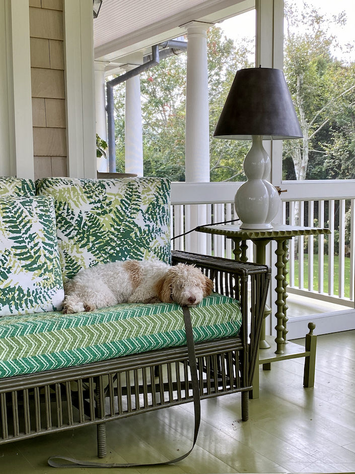 Kate Brodsky's dog Peaches on her Hamptons porch-1