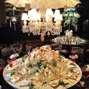 Ally Coulter Orchid Dinner 2015