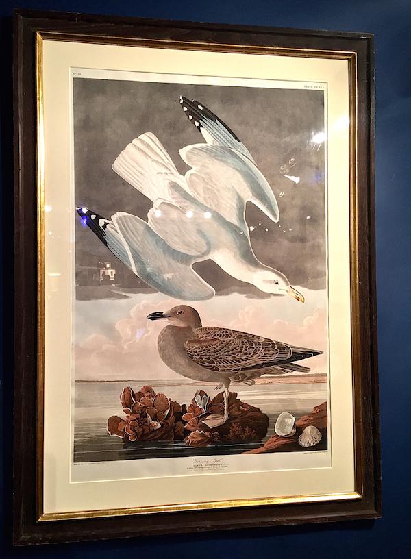 Audubon at Antiques & Design Show of Nantucket
