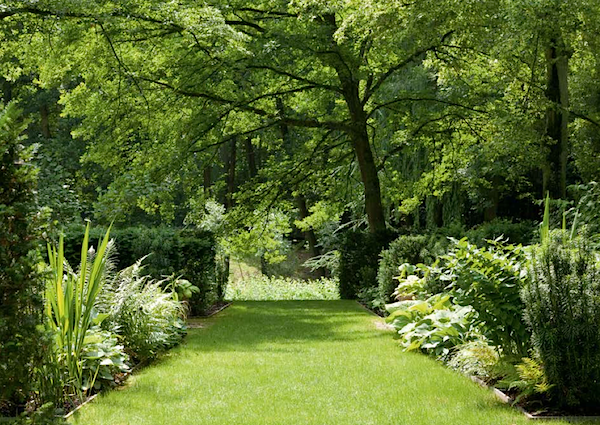 Louis Benech Twelve French Gardens Quintessence