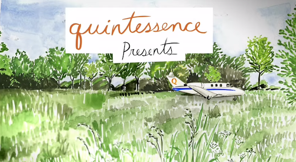 Hayley Sarno illustration for the Quintessence video series
