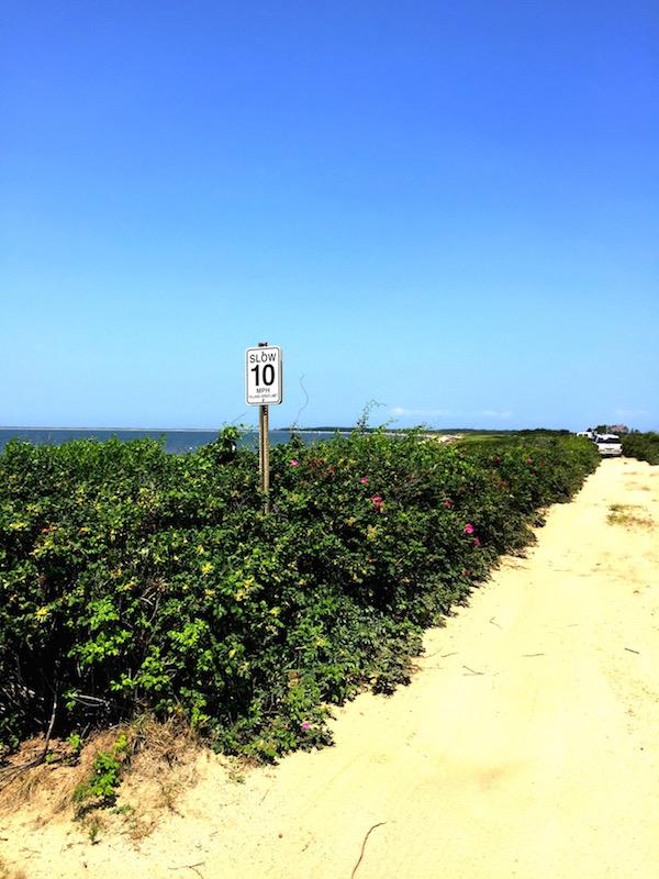 Nantucket walk