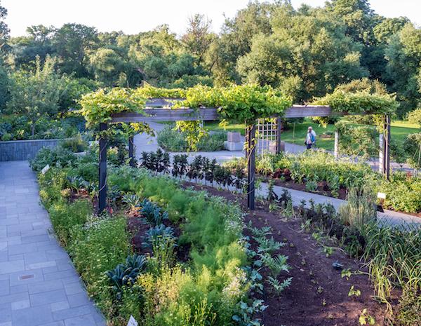 annual garden show