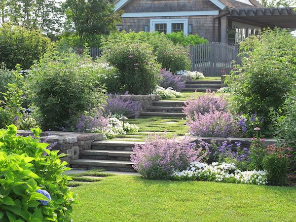 The Good Garden romantic steps