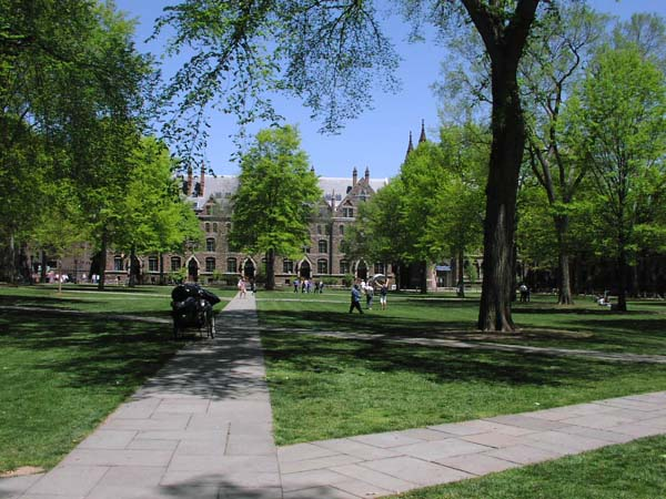 yale college campus