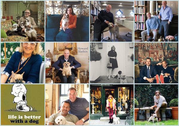 Dogs and Their Designers via AgentofStyle.com